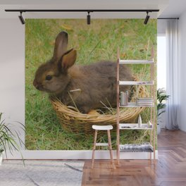 Little rabbit in the basket Wall Mural