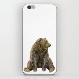 sitting bear print iPhone Skin