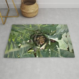 Cauliflower is the New Cool Rug