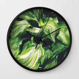 Hosta Wall Clock