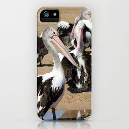 Pod of Australian Pelicans iPhone Case