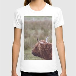 Vintage Scottish cow - Thurso, The Highlands, Scotland T-shirt