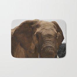 African Wildlife: Elephant 1 Bath Mat