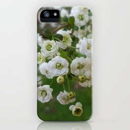 Each Bloom is a Celebration iPhone Case