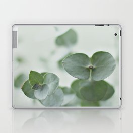 EUCALYPTUS GREEN 2 Laptop & iPad Skin