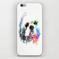 shih tzu iPhone & iPod Skins featuring Shih TZU  by PhotosbySN