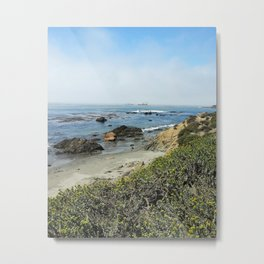 Wild Coast Metal Print