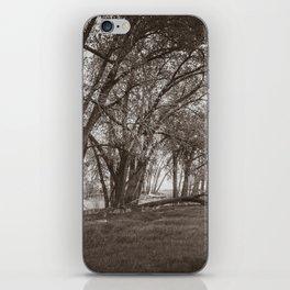 Cottonwoods at Lee's Farm, Sepia iPhone Skin
