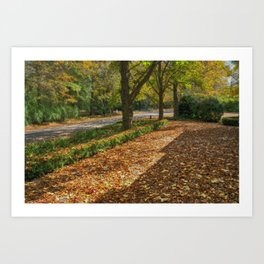 Pure Autumn Art Print
