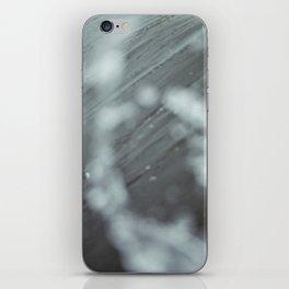 Atlantic #2 iPhone Skin