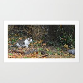 The Cat and the Squirrel Art Print