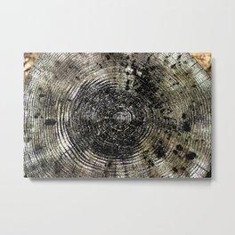 Age of Trees Metal Print
