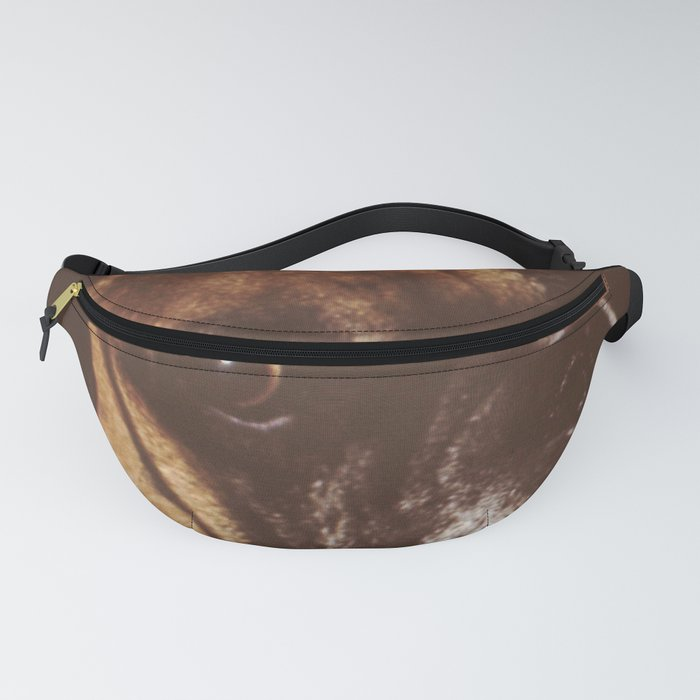 Quino, our boxer. Fanny Pack