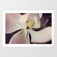 magnolia Art Prints featuring Magnolia by Deepti Munshaw