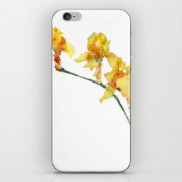 Yellow Irises iPhone Skin