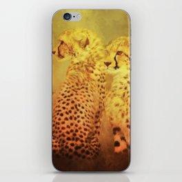 Cheetahs iPhone Skin