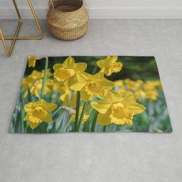 Daffodils in a field Rug