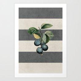 botanical stripes - plums Art Print