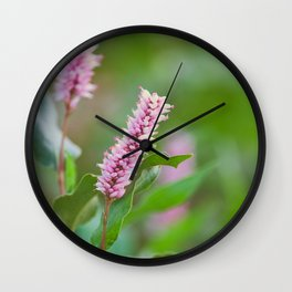 Beautiful Flowers from Pond  Wall Clock