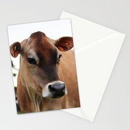 Jersey Portrait Stationery Cards