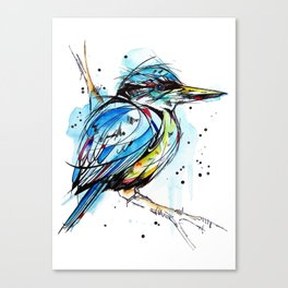 Bold Kingfisher  Canvas Print
