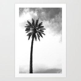 Tropical Darkroom #143 Art Print