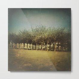 Somewhere a Park / Un parque de algún lugar Metal Print