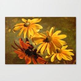 Sunshine in my Garden Two Canvas Print