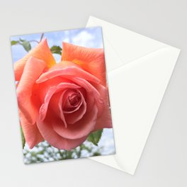 Late Spring Stationery Cards