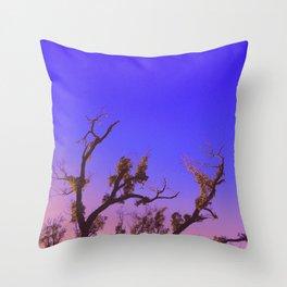 Warm Nights Throw Pillow