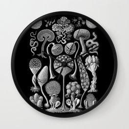 Slime Molds (Mycetozoa) by Ernst Haeckel Wall Clock