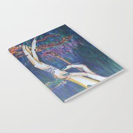 Droplets Notebook
