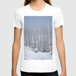 Winter season T-shirt