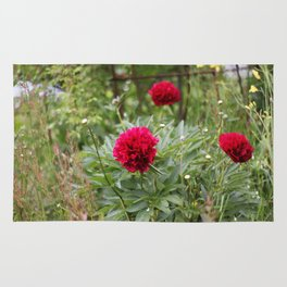 Red Peonies in Bloom Rug