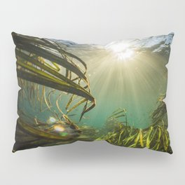 Through the Wild Pillow Sham