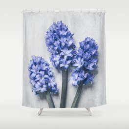 Three Blue Hyacinths Shower Curtain
