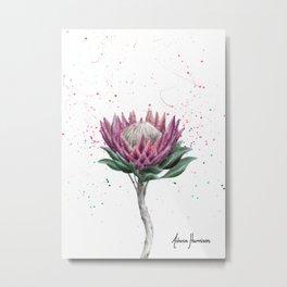 Sugarbush Flower Metal Print