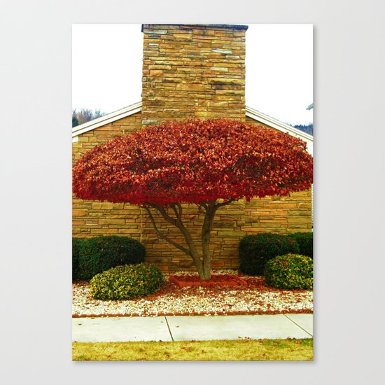 The One Wearing Red Canvas Print