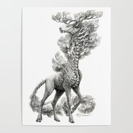 Pinus strobus Poster