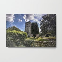 St John The Baptist Ripe Metal Print