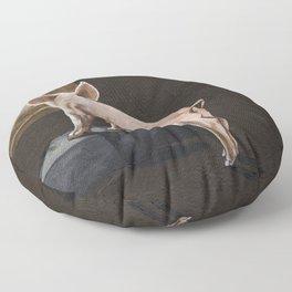 Free Me Floor Pillow