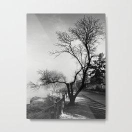 Winter Skeleton Metal Print