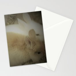 bunnys Stationery Cards