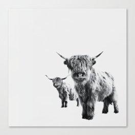 HIGHLAND COW - LULU & SARA Canvas Print