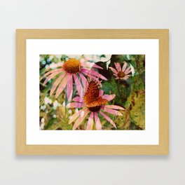 Butterfly ::  Framed Art Print