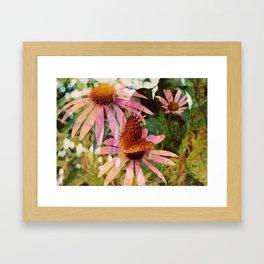 Butterfly ::  Framed Art Print