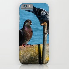 Drinking Pigeons iPhone 6s Slim Case