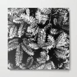 Abstract Pines Metal Print