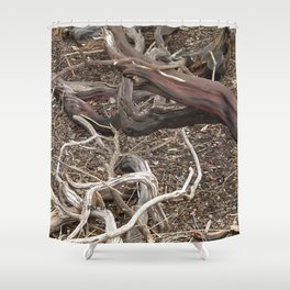 TEXTURES - Manzanita in Drought Conditions #3 Shower Curtain