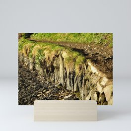 Rural Riverbank Path Mini Art Print